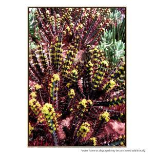 Red Spike - Canvas Print