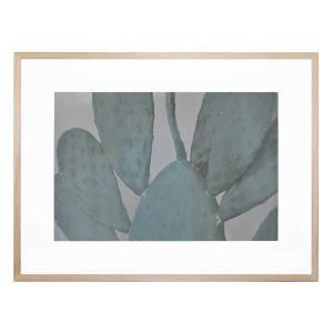 Bold Cactus - Framed Print