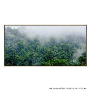 Absolution - Canvas Print