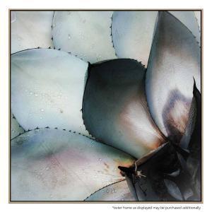 Cactus - Canvas Print