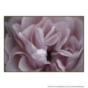 Rosa Camino - Canvas Print