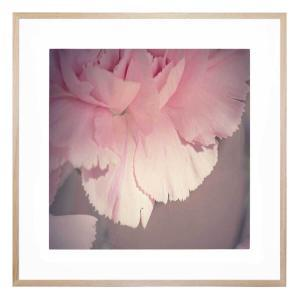 Before the Ballet - Framed Print