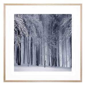 Bastogne - Framed Print