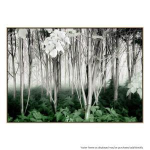 Between the Worlds - Canvas Print