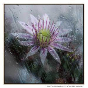 Blossom Tears - Canvas Print