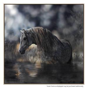 Andalusia - Canvas Print