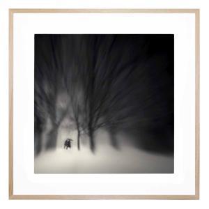 Edgemore Park - Framed Print
