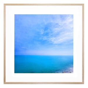 Albatross Skies - Framed Print