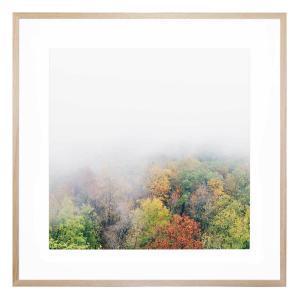 After The Rains - Framed Print
