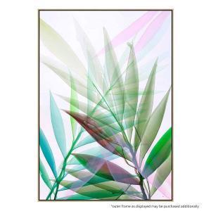 Tropical Study No 8 - Canvas Print