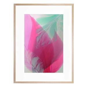 Easter Lily - Framed Print