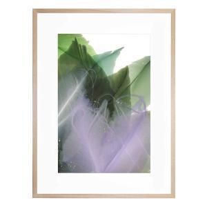 Last of Summer Suns - Framed Print