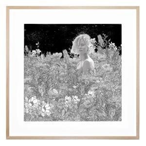 Midnight - Framed Print