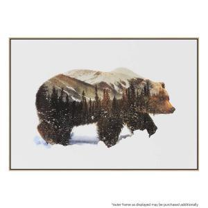 Arctic Grizzly - Canvas Print