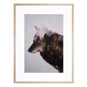 Big Wolf - Framed Print