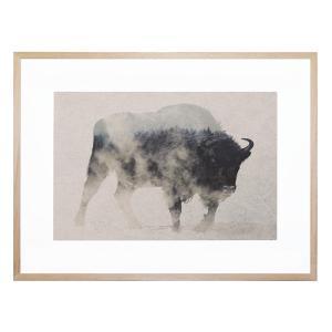 Bison In the Fog Framed Print