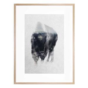 Bison In the Mist - Framed Print