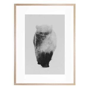 Approaching Bear - Framed Print