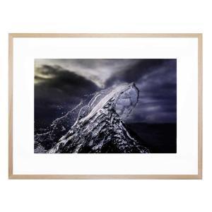 Frozen Fin - Framed Print