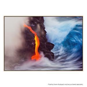 Elements Of Nature - Canvas Print