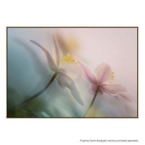 Gentle - Canvas Print