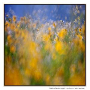 A Tribute To Monet - Canvas Print