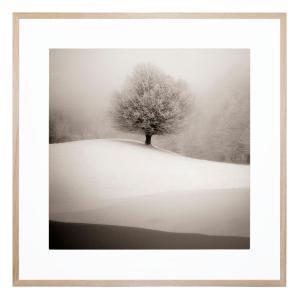 Winter Degrades - Framed Print