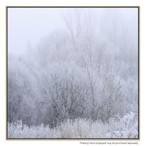 Hinterland Frost - Canvas Print