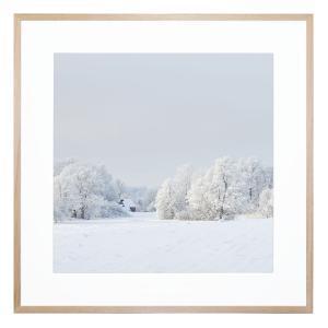 Iced Wonderland - Framed Print