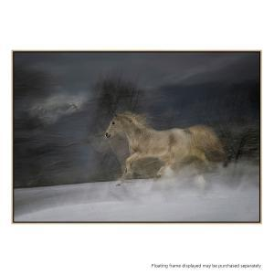 Gallop In The Snow - Canvas Print