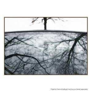 Tree Reflection - Canvas Print