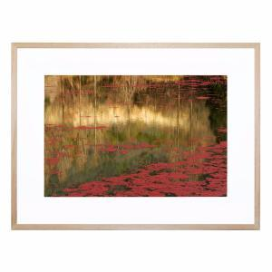 Red - Framed Print