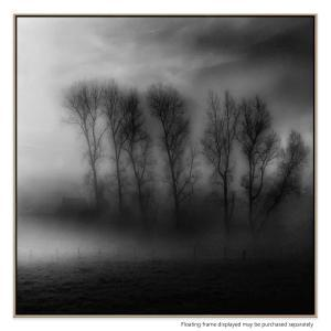 Shades Of Fog - Canvas Print