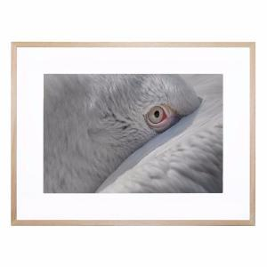 Eye - Framed Print