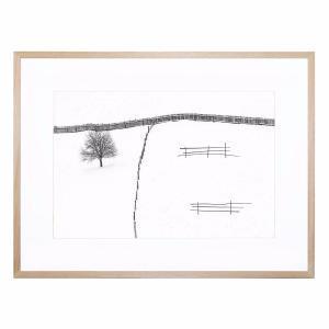 Haiku - Framed Print